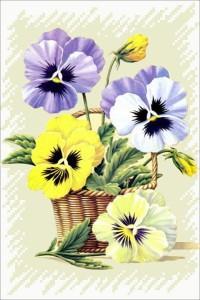 цветочные тайны